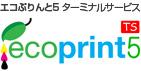 エコぷりんと5 ターミナルサーバー ロゴ